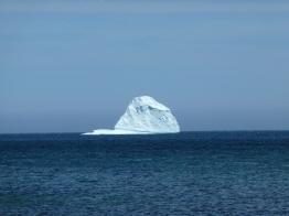 Iceberg from shore