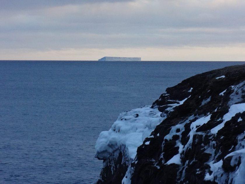 Iceberg January